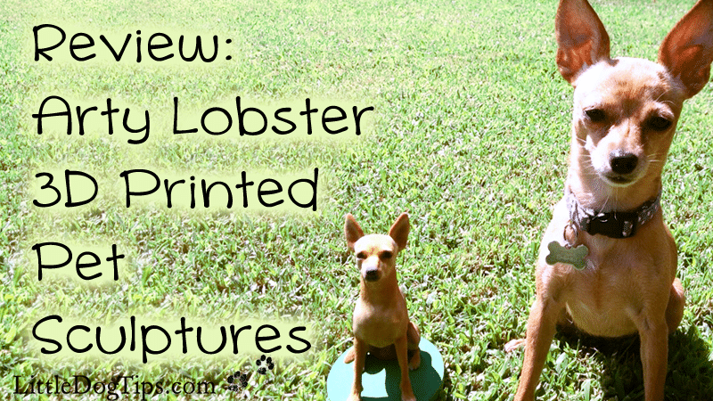 Arty Lobster 3D Printed Pet Sculptures review #sponsored