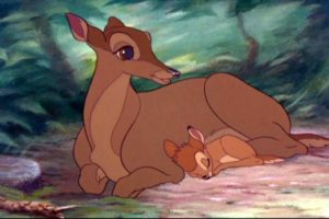 Having a chihuahua makes you feel like Bambi's mom