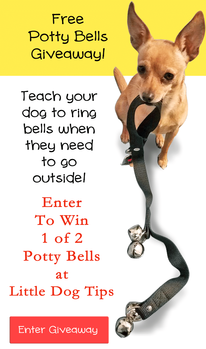 2 Winners Will Be Selected To WIn Their Very Own #Pottybells! #giveaway #sponsored