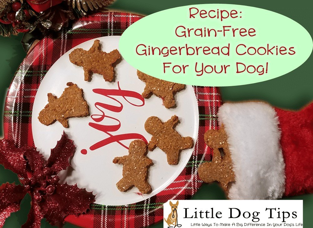 Grain Free Gingerbread Dog Cookies