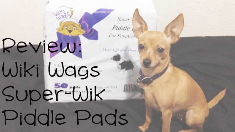 6 Plys For Your Dog! Wiki Wags Disposable Piddle Pads Product Review
