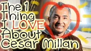 What I Love about #Cesarmillan