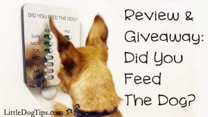 Did You Feed The Dog? #DYFTD Review and #Giveaway