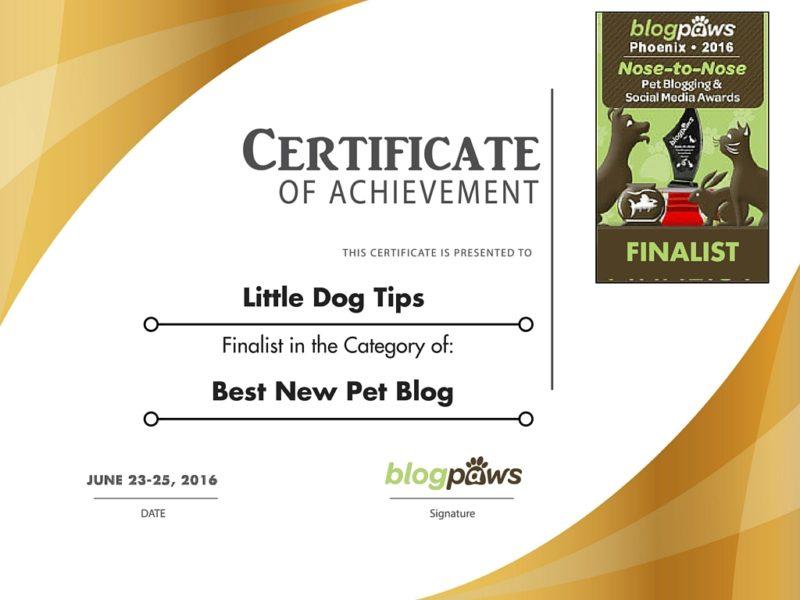 BlogPaws Finalist