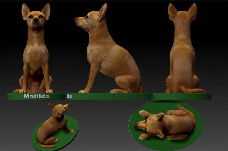 Matilda 3D print statue Proof