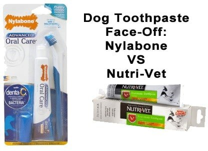 Dog Toothpaste Face-Off: Nylabone Advanced Oral Care VS Nutri-Vet Enzymatic Chicken Flavored Canine Toothpaste