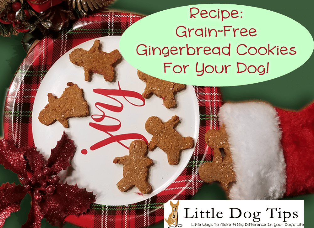 Grain Free Gingerbread Dog Cookies
