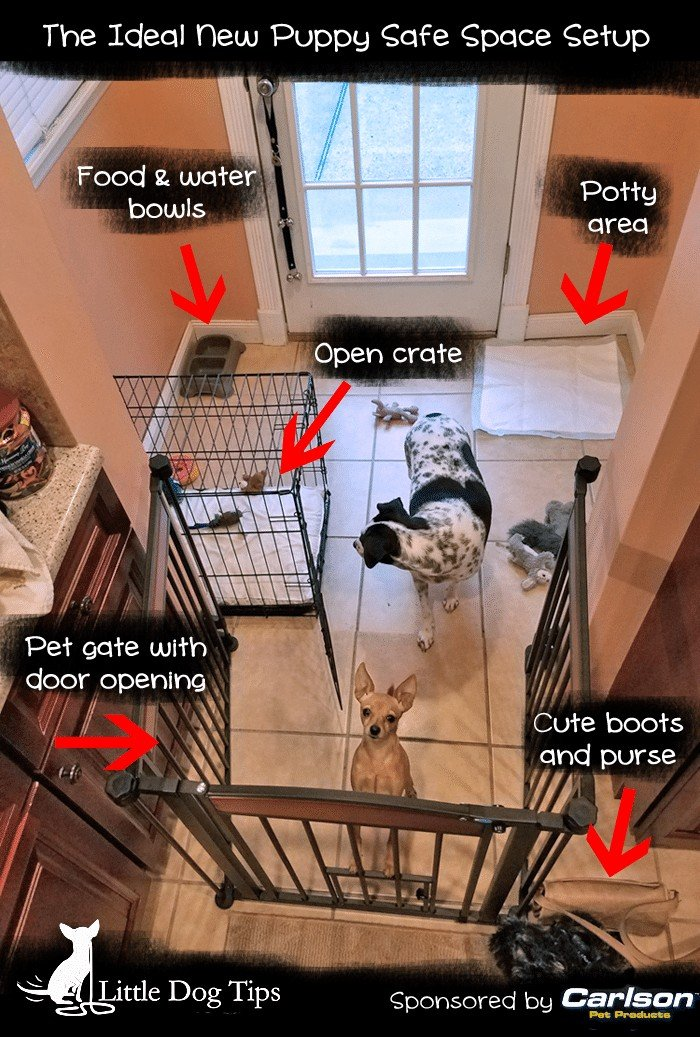 New Puppy Safe Space area with walk through pet gate