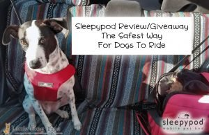 Sleepypod #sponsored giveaway review: The safest way for dogs to ride in the car