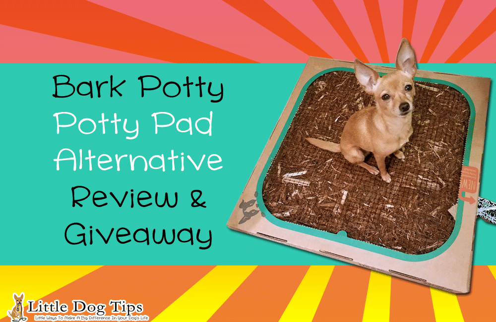 Bark Potty Review/Giveaway – A Mess-Free Alternative To Potty Pads! #ad