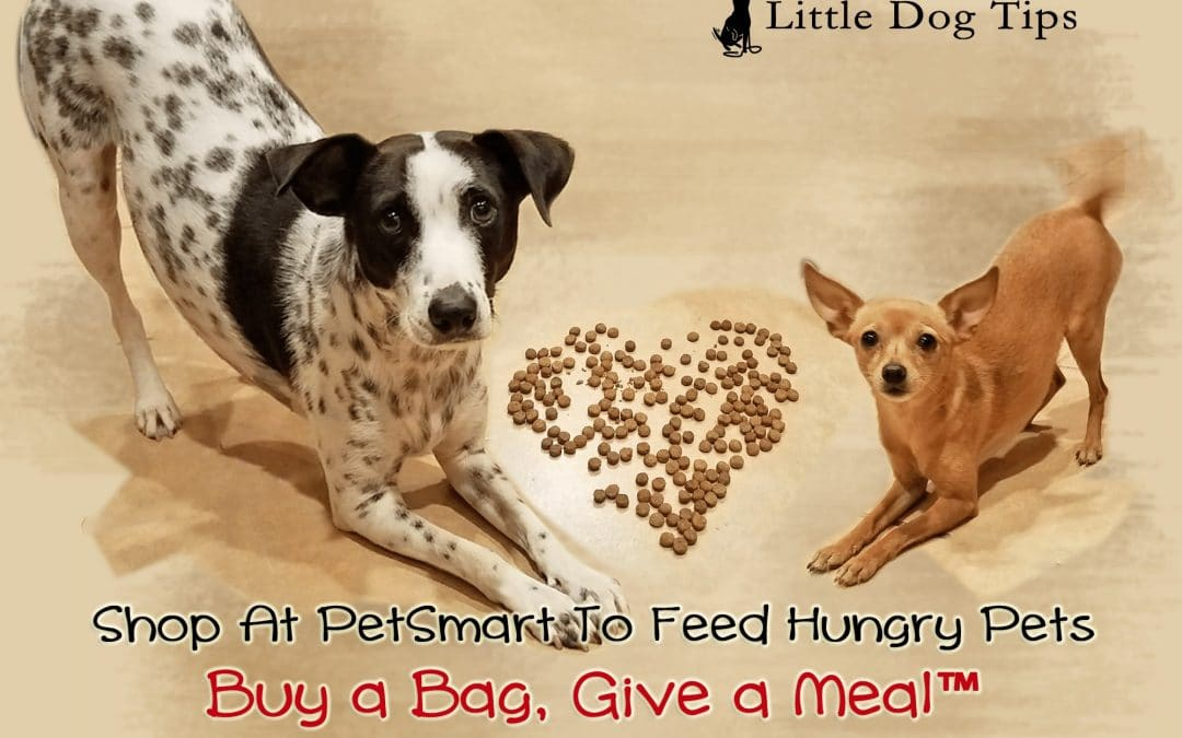 Help Feed Hungry Pets With PetSmart® Buy a Bag, Give a Meal™