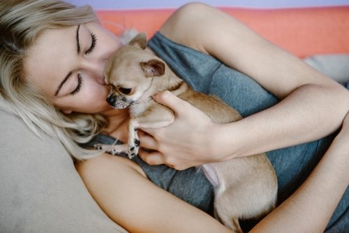 Sleep with a small dog without crushing them