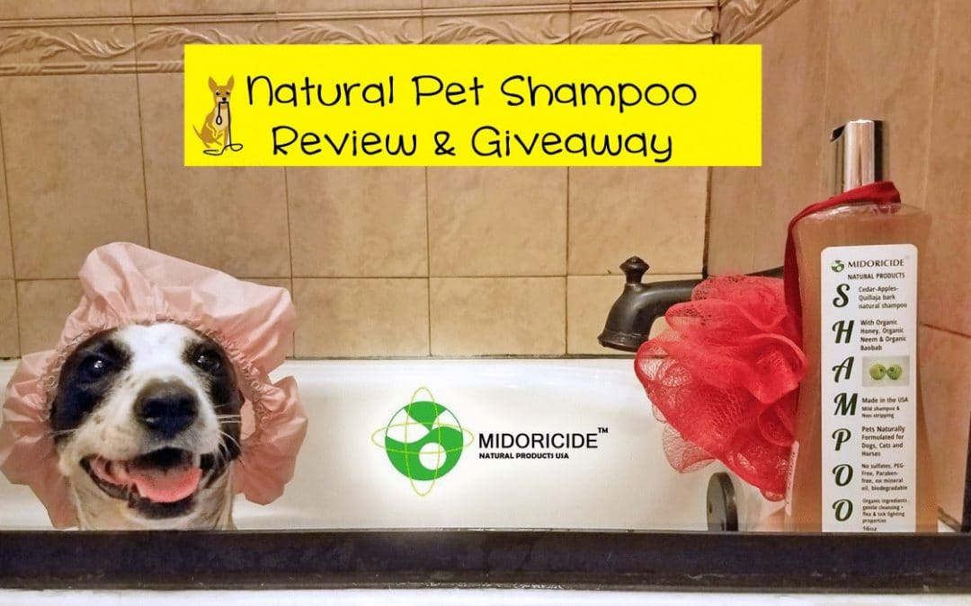 Midoricide Natural Pet Shampoo Review and Giveaway