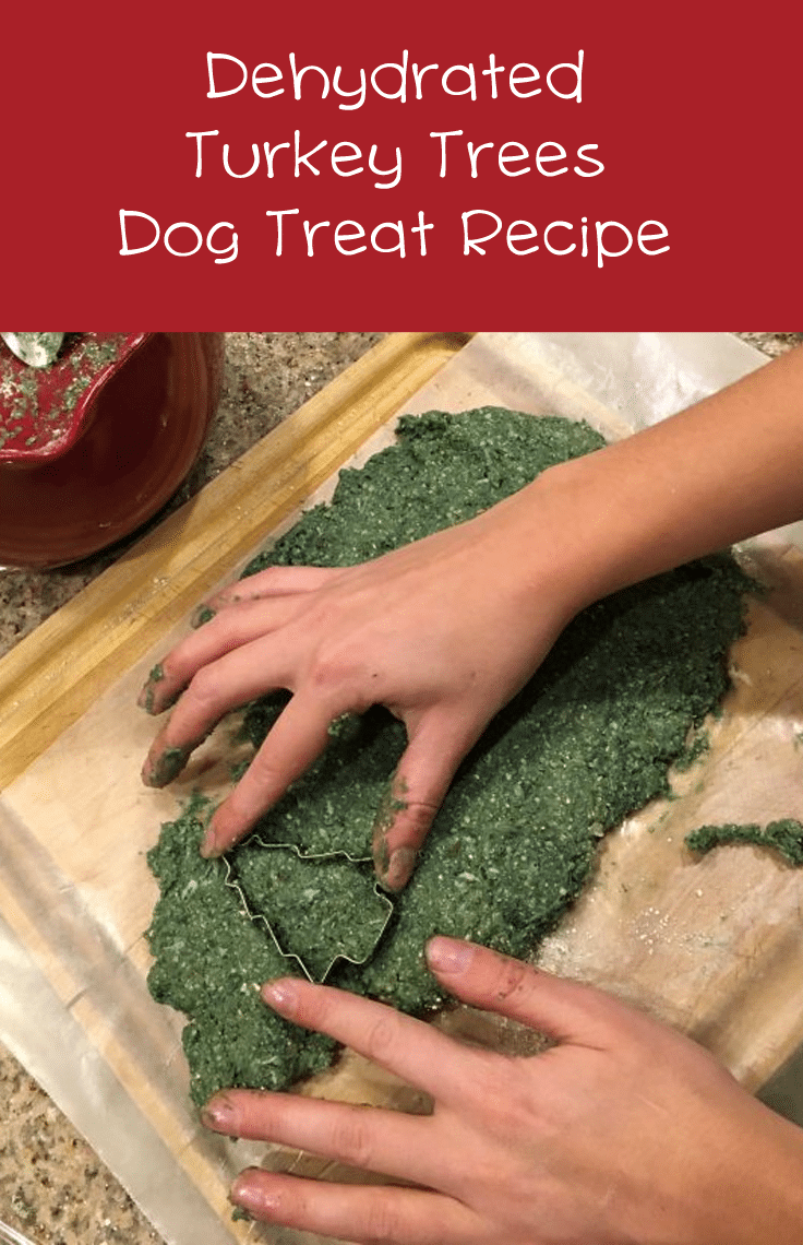 How To Make Dehydrated Turkey Tree Dog Treats #dogtreatrecipes #dehyrator