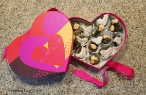 Homemade healthy dehydrated valentine's day truffles for your dog