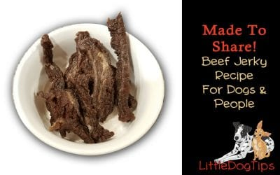 Made To Share: Beef Jerky Recipe For Dogs AND Humans