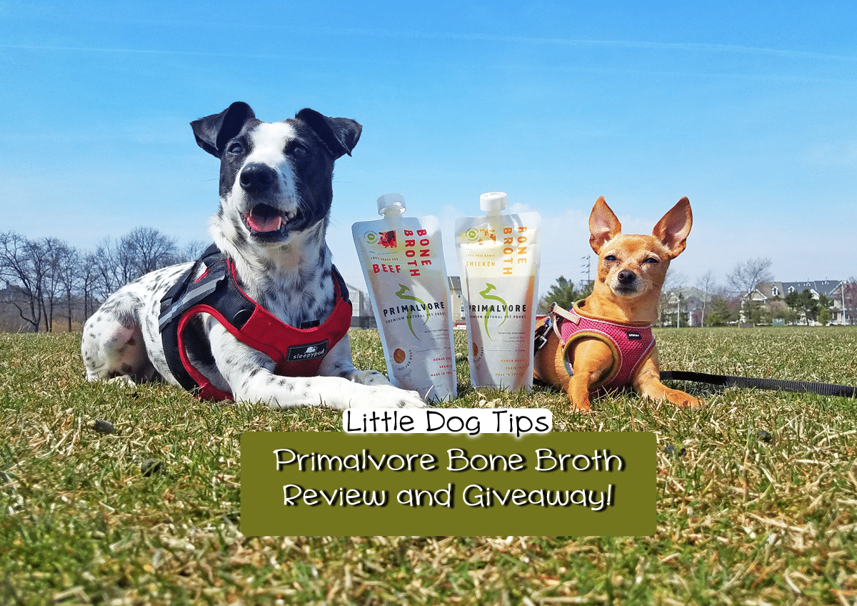 How Bone Broth Can Boost Your Dog's Health – Primalvore Review/Giveaway