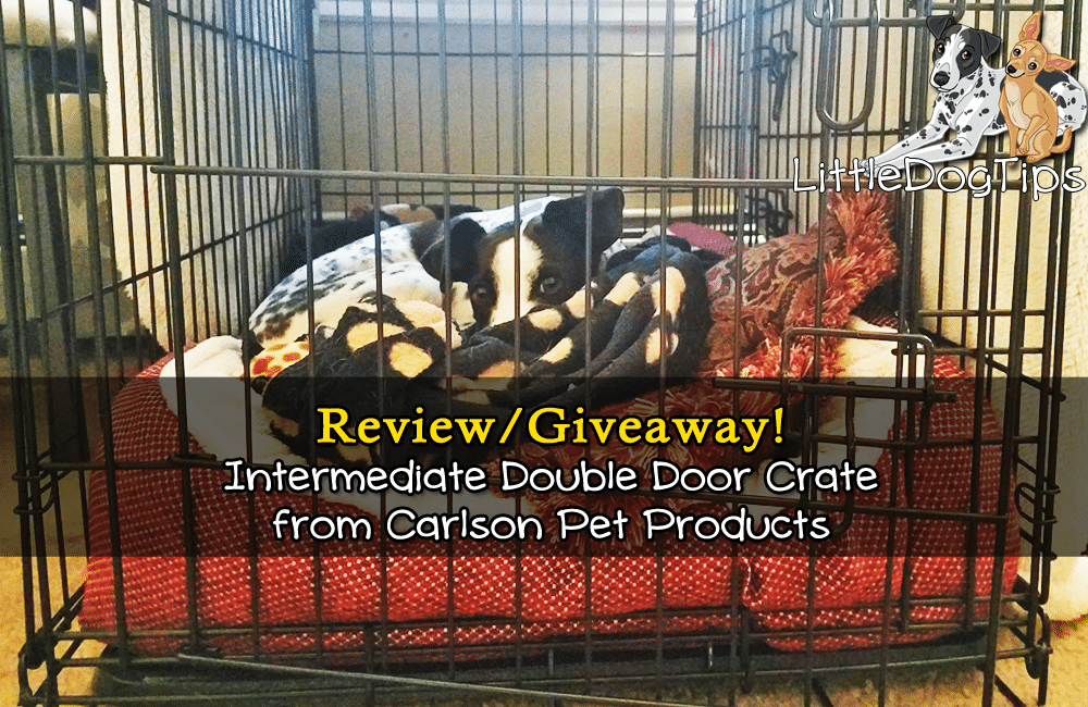 Carlson Pet Intermediate Double Door Crate Review/Giveaway