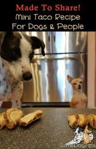 Mini Taco Treat Recipe For Dogs! Cinco De Mayo inspired
