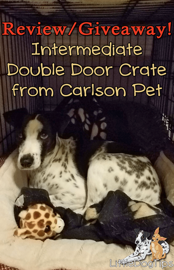 #Giveaway #Pets Carlson Pet Products - Intermediate Double Door Crate