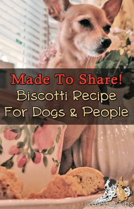 Biscotti For Dogs - #anise can help relieve anxiety, and it's so yummy in these biscotti style treats.