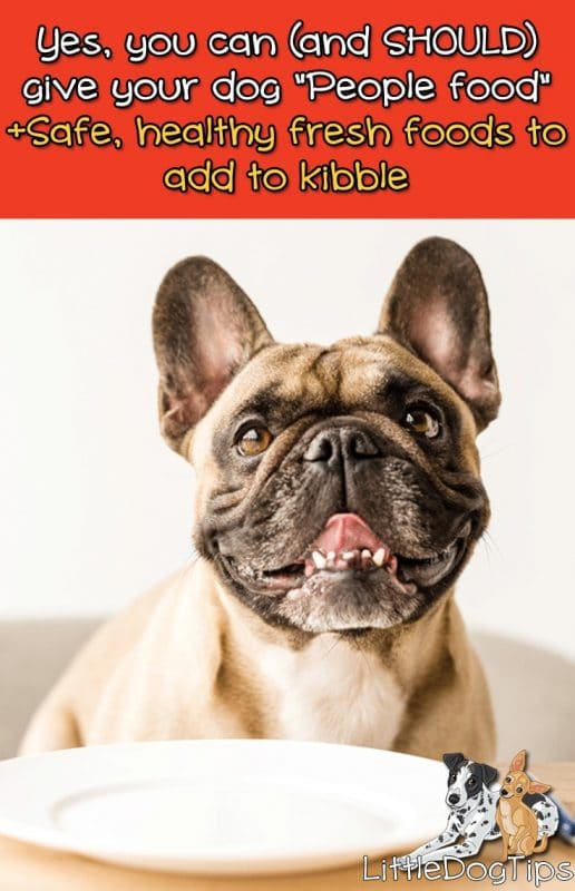 Which People Foods Are Healthy And Safe For Dogs? What to add to your dog's kibble