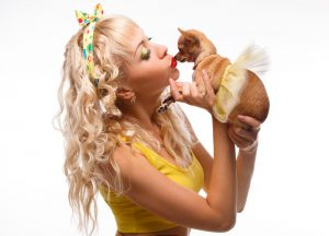 How To Sweeten Your Chihuahua's Bad Breath