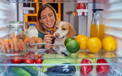 Do Dogs Need Vegetables In A Raw Diet Or Added To Kibble?