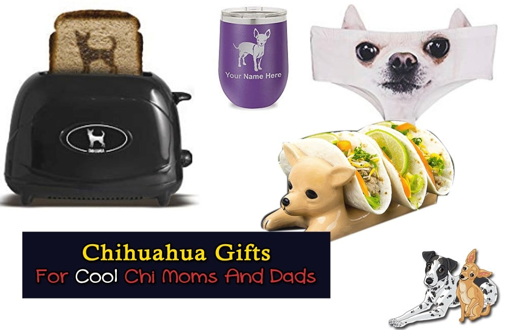 Chihuahua Gifts That Aren't Too Kitschy