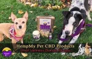 HempMy Pet Dog Small Wellness Bundle Review