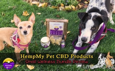 HempMyPet Small Wellness Bundle CBD Pet Product Review