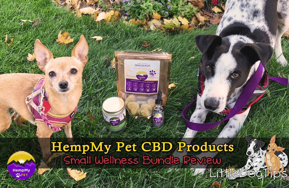 HempMyPet Small Wellness Bundle CBD Pet Product Review