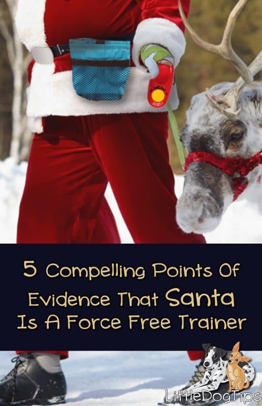 How Santa Trains His Reindeer #christmas #positivetraining #dogtraining