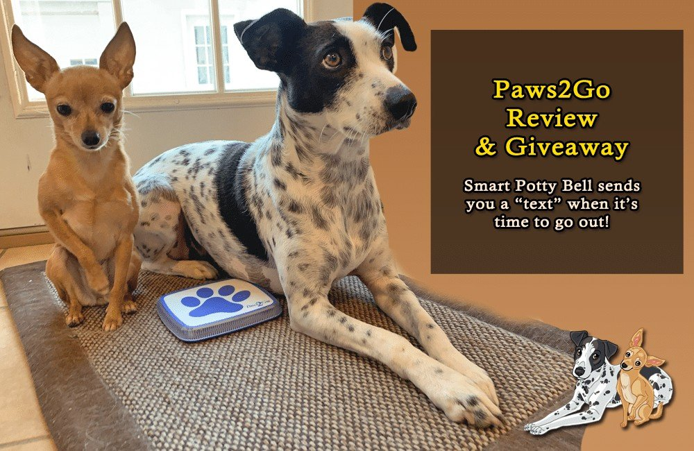 Paws2Go Smart Potty Bell Review + Giveaway