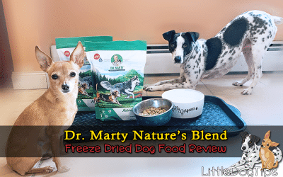 Dr. Marty Nature's Blend Freeze Dried Food Review