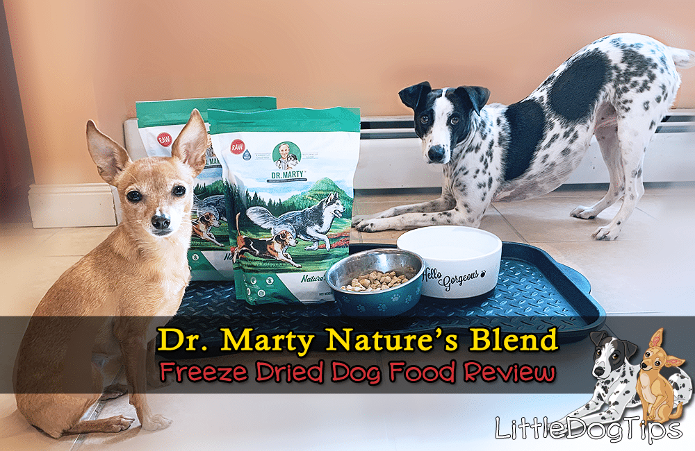 Dr Marty Nature's Blend Freeze Dried Dog Food Review