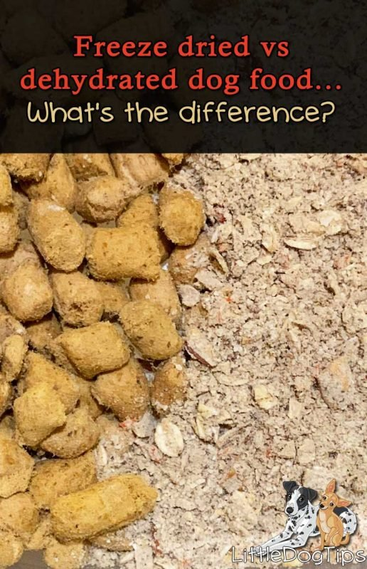 Freeze Dried Raw vs Dehydrated Dog Food - what's the difference? Which is better for your dog?