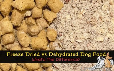 Freeze Dried Vs Dehydrated Dog Food… What's The Difference? – Dr. Marty Nature's Blend Giveaway