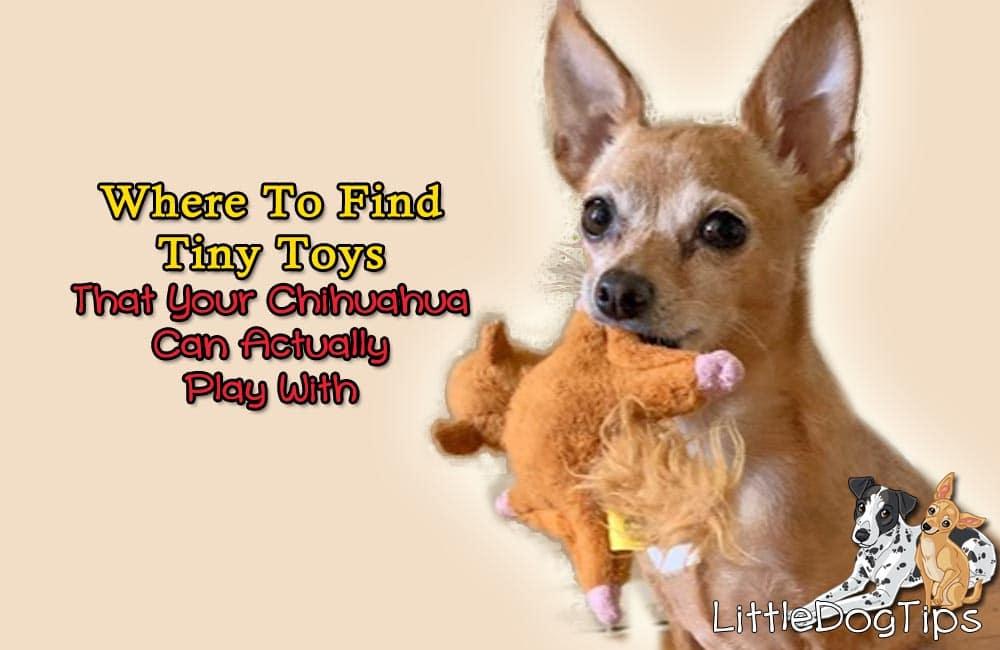 Tiny toys for Chihuahuas