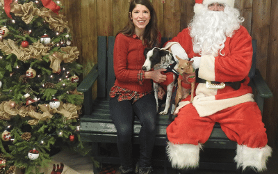 Should You Take Your Dog To See Santa This Year? Why We're Not Going