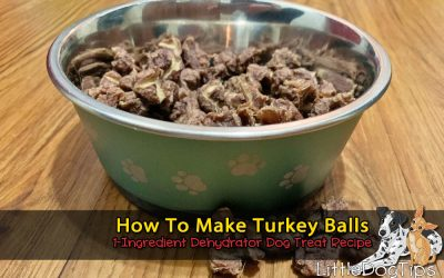 How To Make Thanksgiving Turkey Balls For Your Dog