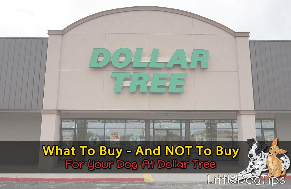 What I Always (And Never) Buy For My Dogs At Dollar Tree