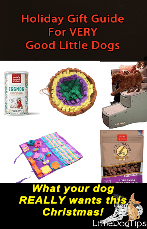 Holiday Gift Guide For Very Good Little Dogs | Little Dog Tips