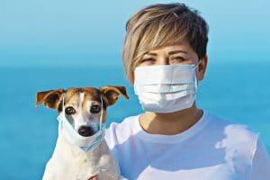 Can Dogs Transmit Coronavirus to People?