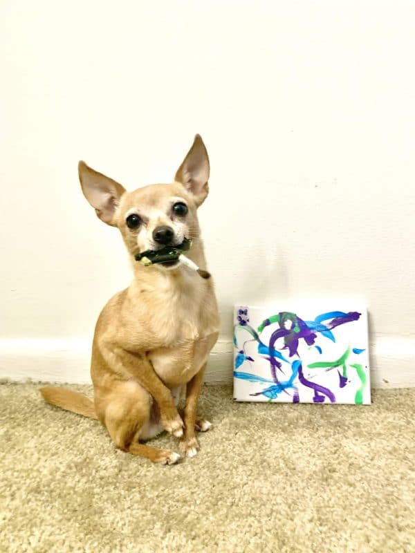 Matilda Paintings By A Dog